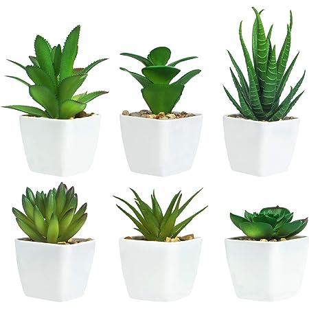 6 Pièces de Plantes Succulentes Artificielles en Pot, Plantes Succulentes Artificielles Vertes, Utilisées pour Le Bureau, Le Salon et La Décoration de La Maison