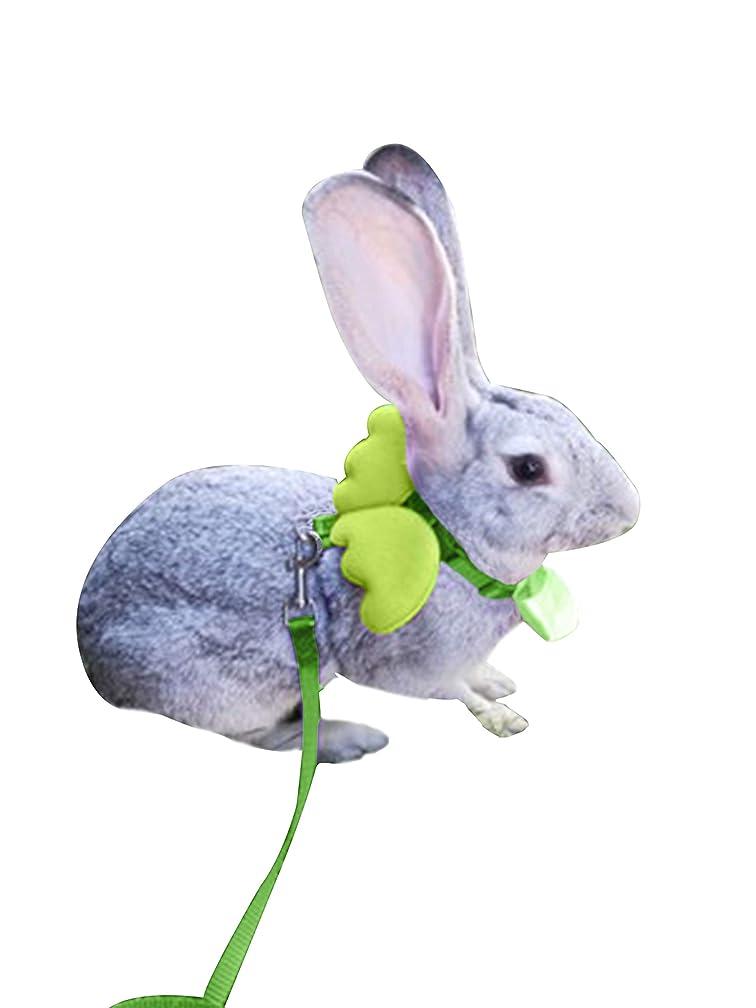 FunPetLife Adjustable Rabbit Harness and Leash Set-Angel Wing