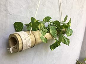 Rareproducts Bamboo Hanging Planter with Disposable Gloves