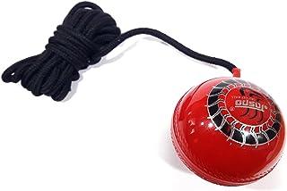 STORITE Sports 合成悬挂板球,带绳索,用于敲打/练习/训练/锻炼