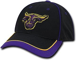 University of Minnesota State Mankato Mavericks Adjustable Jersey Mesh Baseball Ball Cap Hat