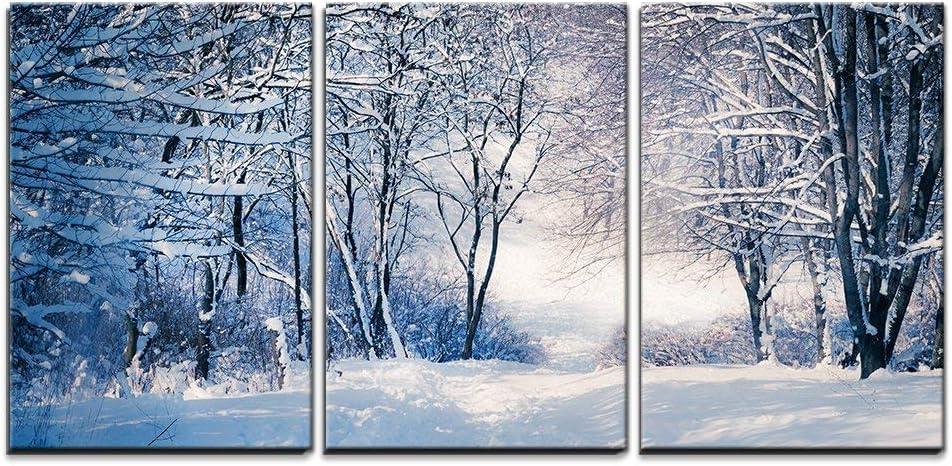 Snowy Winter Landscape Nature Photography Print Set of 3 Piece Minimalist Scandinavian Wall Art Framed Photo Bedroom Living Room Wall Decor