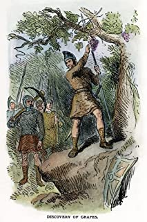 Leif Ericsson (C970-1020) Nnorse Mariner And Adventurer Ericsson And His Men Discovering Grapes In Vineland Wood Engraving...