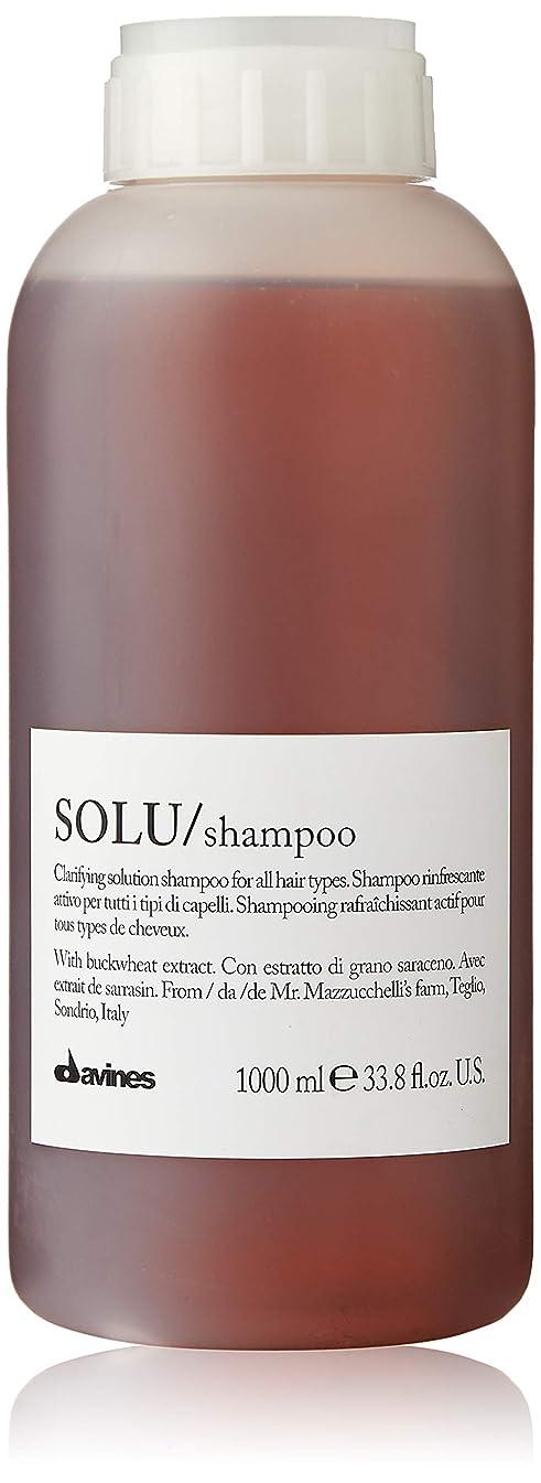 フォーム害ベッツィトロットウッドダヴィネス Solu Clarifying Solution Shampoo (For All Hair Types) 1000ml/33.8oz並行輸入品