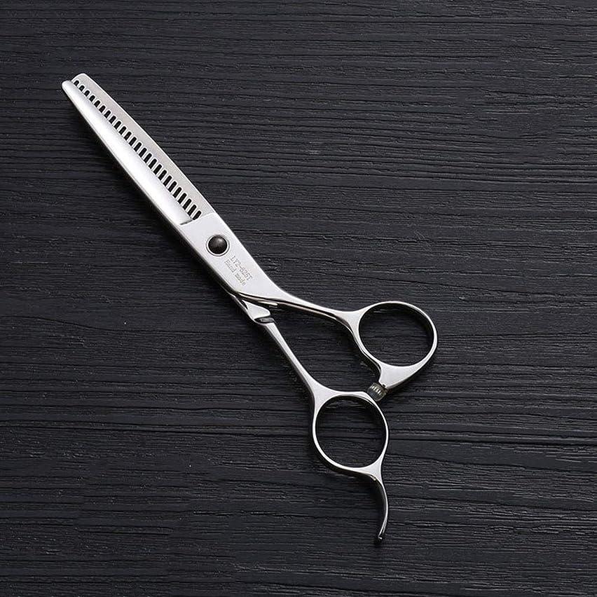 定数カンガルー水差し440Cステンレス鋼ハイエンドヘアカットツール、25歯T型6インチ美容院プロフェッショナル理髪はさみ モデリングツール (色 : Silver)