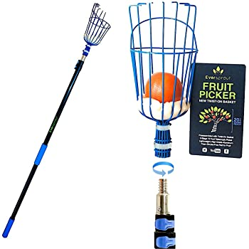 EVERSPROUT 13-Foot Fruit Picker (20+ Foot Reach) | Preassembled, Easy to Attach Twist-On Basket | Lightweight, High-Grade Aluminum Extension Pole | +Bonus Fruit Carrying Bag