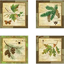 CoasterStone AS10071 A Walk in The Woods Absorbent Coasters, 4-1/4-Inch, Set of 4