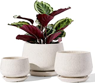 LE TAUCI Indoor Plant Pots, 6.5+5.0+4.0 Inch Flower Pot with Plant Saucer, Small to Large Sized, Ceramic Outdoor Planters,...