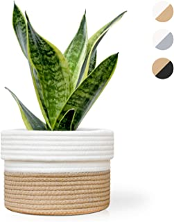 Oasis Valley Cotton Rope Plant Basket Cover for 6 Inch Indoor Plant and Flower Pots (Brown and White)