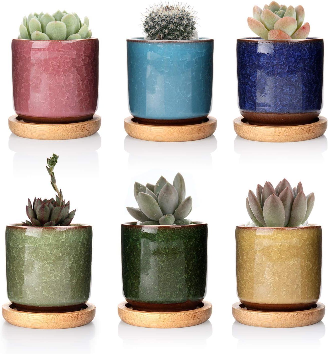 T4U 6.3cm Cerámico Grieta de Hielo Zisha Elevado Serie Suculento Maceta de Cactus Flor Macetas Envase Plantas Azul Claro con Bandejas de Todo Color Conjunto de 6