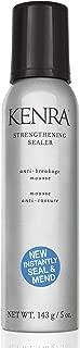 Best kenra professional platinum silkening gloss Reviews