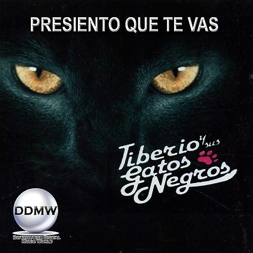 Presiento Que Te Vas de Tiberio Y Sus Gatos Negros en Amazon Music - Amazon.es