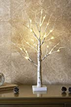 Australove Birch Tree, Money Tree Holder to Hold Gift Jewelry, Artificial Night Light Table Tree Lamp Great Decor for Home...