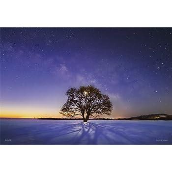 300ピース ジグソーパズル KAGAYA ハルニレの木と天の川 (北海道)【光るパズル】 (26x38cm)