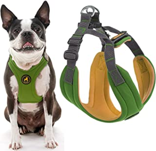 Gooby - Convertible Harness, Small Dog Step In Neoprene Harness with Easy Neck Fastener, Green, Large
