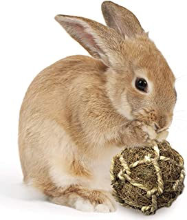 SunGrow Rabbit Teeth Coconut Fiber Ball, 2.5-3 Inches, Floss Ball Improves Dental Health, Stress Relieving, Lightweight, Ideal for Pocket Pet