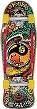 santa cruz 40th anniversary skateboard