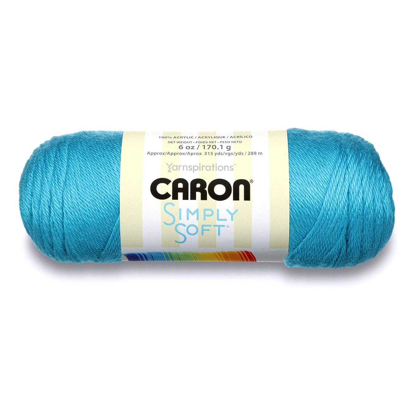 Simply Soft Brites Yarn-Blue Mint