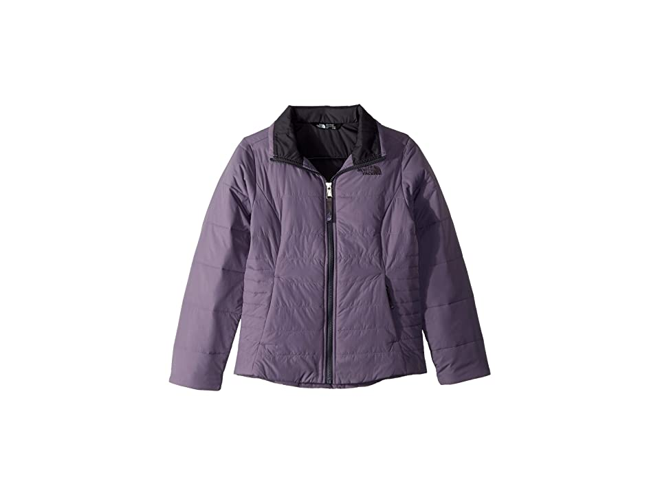The North Face Kids All Season Insulated Jacket (Little Kids/Big Kids) (Purple Sage) Girl