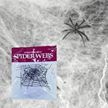 Toy Cubby Realistic Creepy Halloween Decoration Spider Web and Spider - 12 Pack