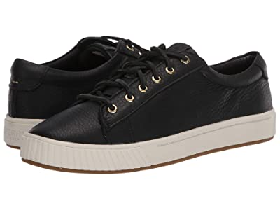 Sperry Anchor PlushWave LTT Leather (Black) Women