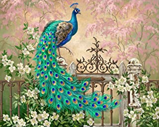 DIY Paint by Numbers Kit for Adults - Peacock Green Blue Paint by Numbers Landscape Scene Paintings Arts Craft for Home Wa...