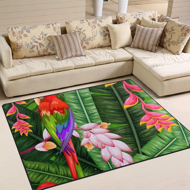 MALPLENA Gorgeous Parred Area Rug Anti Slip pad Entry Way Door Mat Floor Mats shoes Scraper