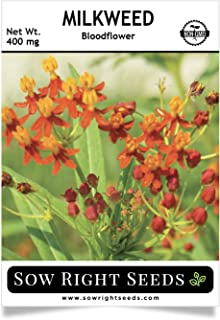 Best bulk milkweed seeds for sale Reviews