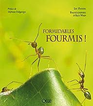 Formidables fourmis ! (Beaux livres) (French Edition)