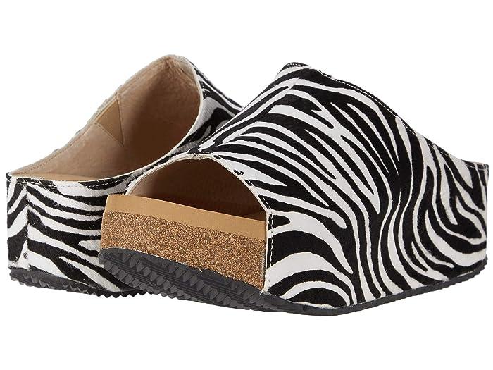VOLATILE  Mingo (Black/White Zebra) Womens Shoes