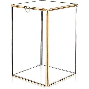 MyGift Claro Cristal Terrario Planta w/latón Metal Frame/Mesa Curio Case/ Caja de Sombra: Amazon.es: Hogar