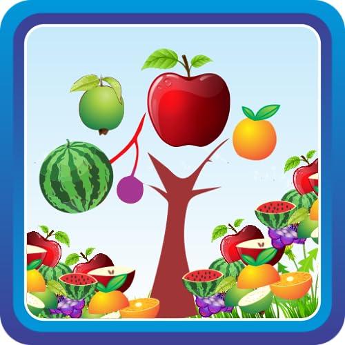 Fruit Cuttle