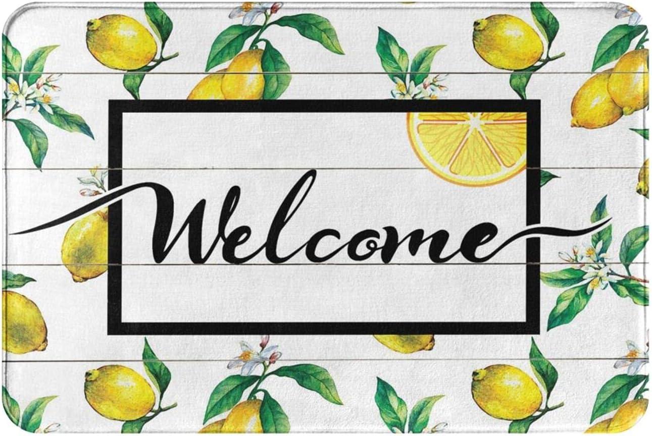 Welcome Door Classic Mat Lemon Decorative Doormat Sl Washable Rubber Non Sacramento Mall
