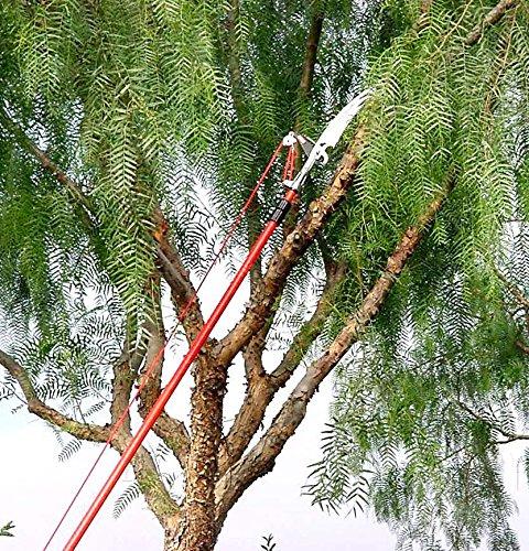 Corona TP 3841 DualCOMPOUND Action 12-ft. Tree Pruner