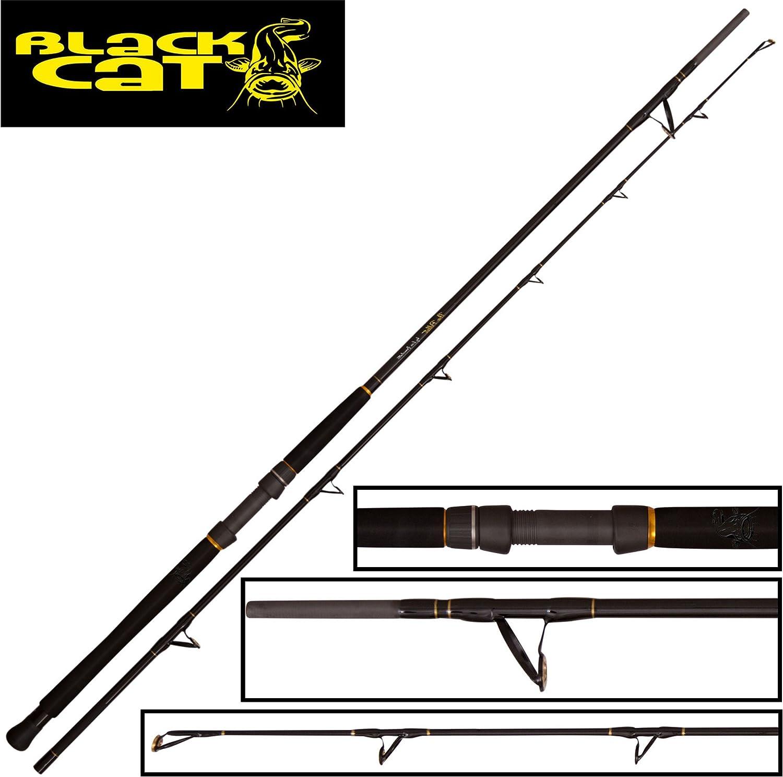 schwarz Cat The Pellet 2,85m 500g - Wallerrute zum Wallerangeln, Welsrute zum Ansitzangeln, Angelrute zum Ansitzangeln auf Waller