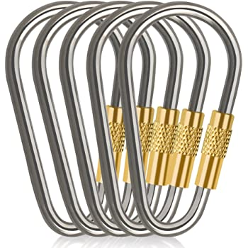 1pcs Titanium Alloy Carabiner D-Ring Key Chain Keychain Clip Hook Outdoor G X3G0
