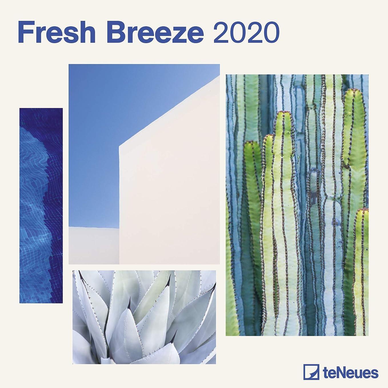 誇りルーフ多年生Fresh Breeze 2020