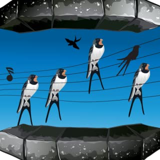 Bird Ringtones