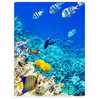 """HommomH Tropical Fish Soft Blanket Fluffy Cozy Throw Keep Warm Easy Care Bedding Kids Sofa Realistic Marine Wildlife Coral Reef and Tropical Fish 50"""" x 80"""" Blue"""