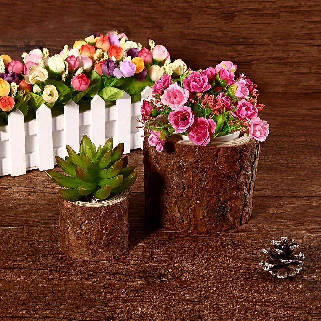 アンデス山脈一見試用花鉢 ガーデン屋外ミニ木Spilingジューシーなプランタースタイリッシュな植物の植木鉢フラワーポットトレイ 観葉植物 (Color : Brown, Size : One size)