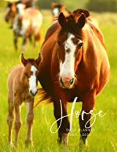 Planner July 2019- June 2020 Horse Equine Foal Monthly Weekly Daily Calendar: Academic Hourly Organizer In 15 Minute Interval; Appointment Calendar ... Journal Diary With Quotes & Julian Dates
