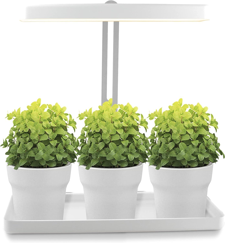 Jardín de diseño con luz LED ajustable en altura   20 W   Cultivo interior orgánico de plantas y hierbas aromáticas   Temporizador 16/8h integrado