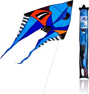 Single Line Kite Picasso Style Outdoor Flying 1.5x2 m Beginner-to-Intermediate 1 String Line with Handle Winder Storage Ba...