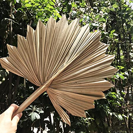 1 Bunch Palm Leaves Thin Natural Dried Flower Home Wedding Party Ornament Decor
