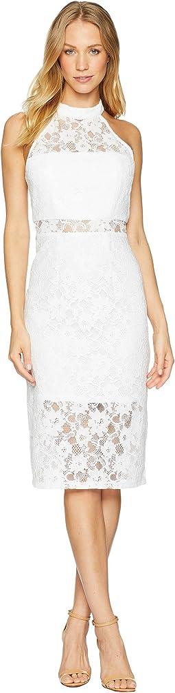 Sheer Paneled Bodycon Dress