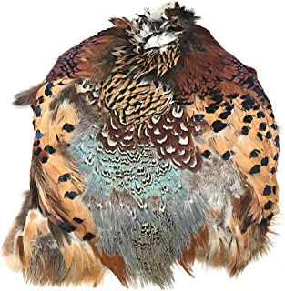 American Feathers Ringneck Pheasant Skin #2 Grade - Product of U.S.A