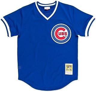 Mitchell & Ness Ryne Sandberg Blue Chicago Cubs Authentic Mesh Batting Practice Jersey