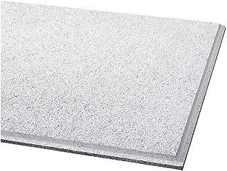 Acoustical Ceiling Tile 24