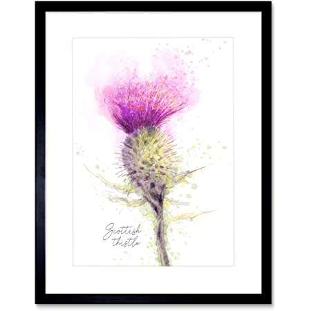 THISTLE SCOTTISH SCOTLAND FLOWER ABSTRACT Painting Canvas art Prints