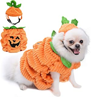 Legendog Pumpkin Creative Clothing Halloween